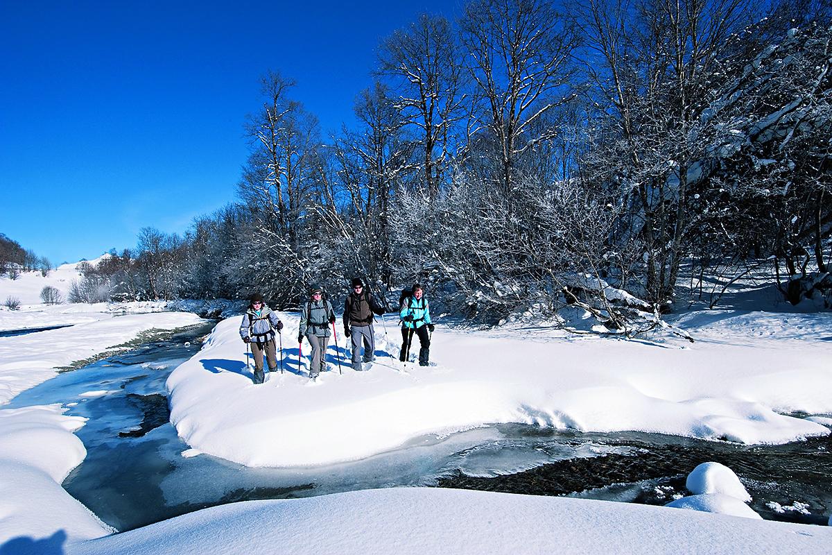 Snow-shoes_1200-x-800px
