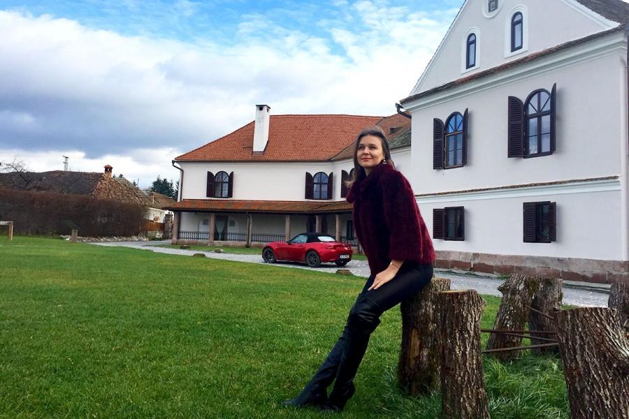 Prințesa la castel