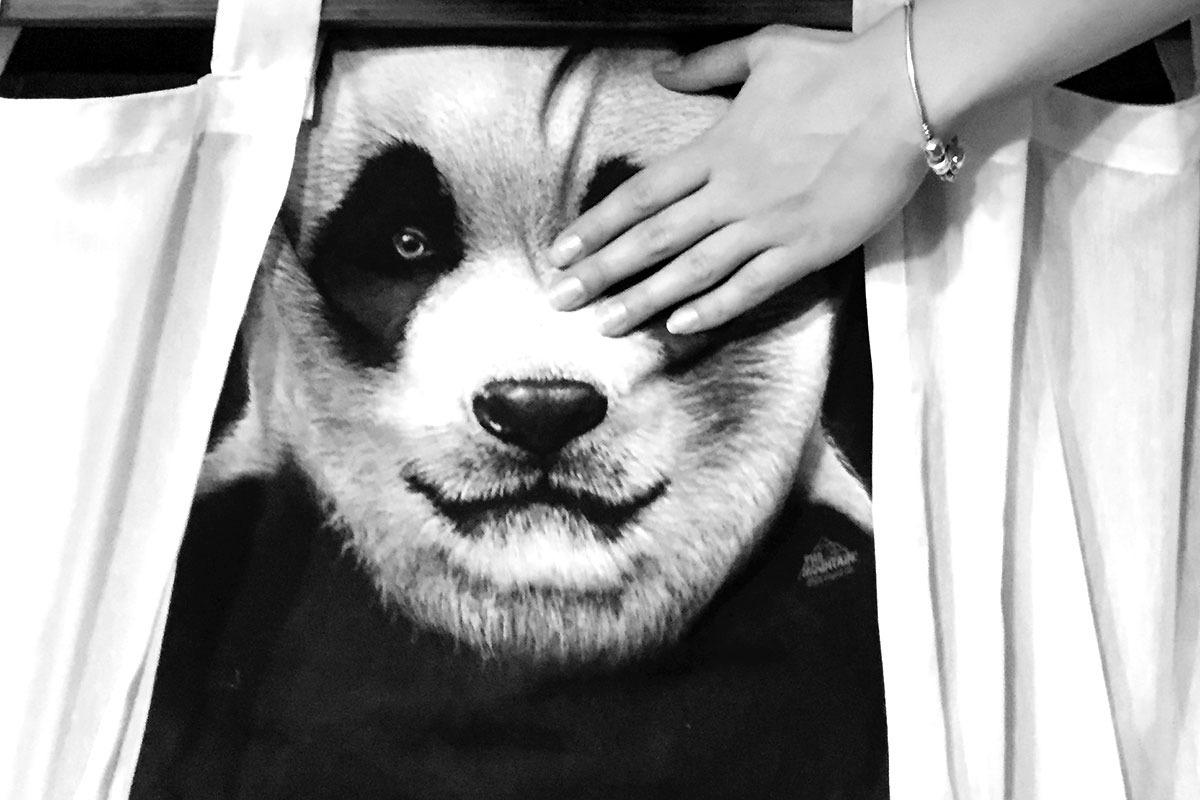Panda-pirat_blog