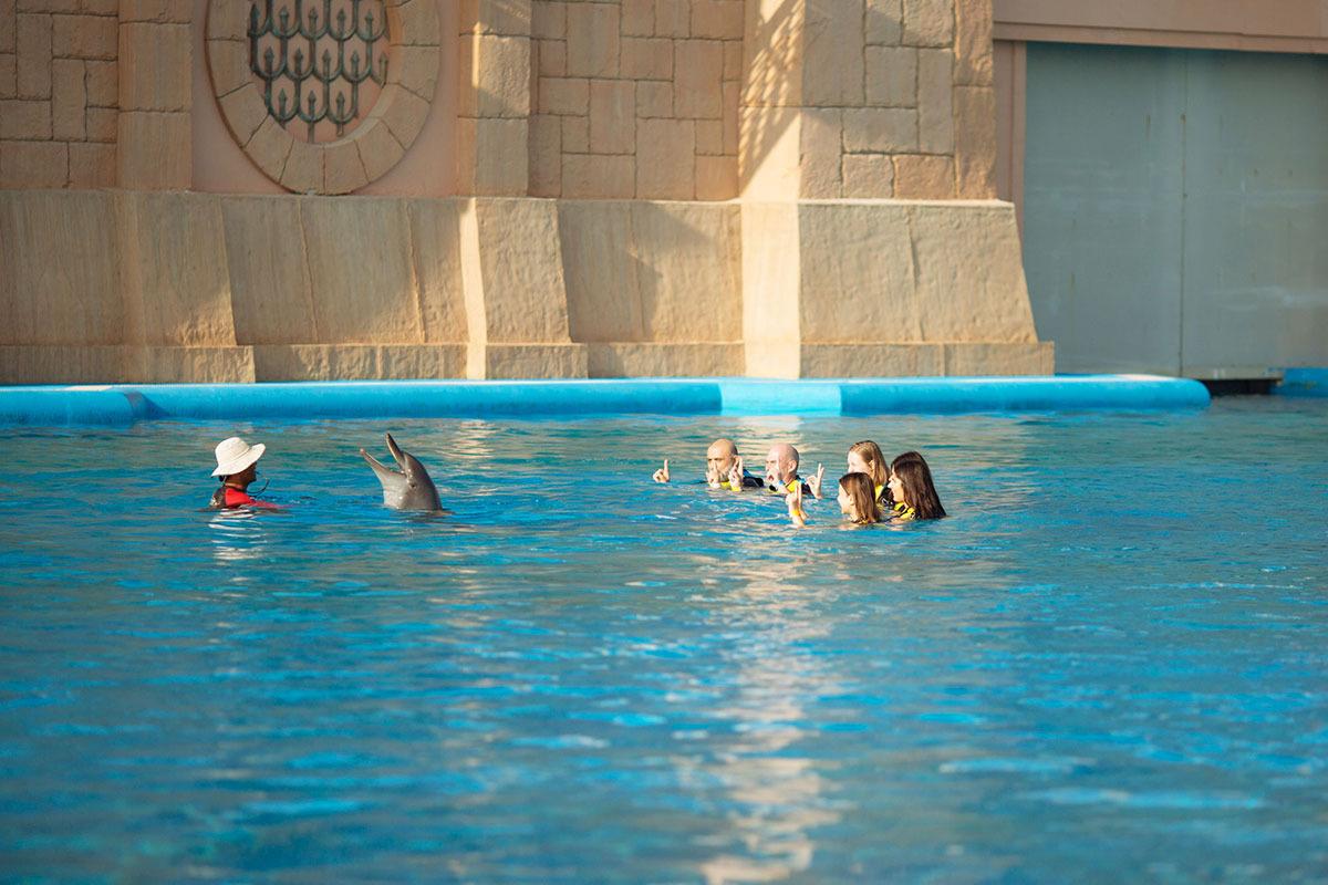 Raluca-si-grupul_Dolphin's-Bay_TheIdealist